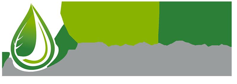 Dual fuel eveolutión
